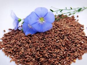 Семена льна 100 гр