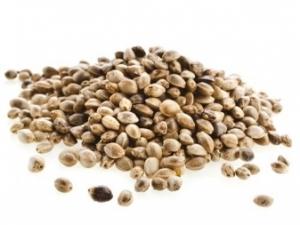 Семена конопли 100 гр